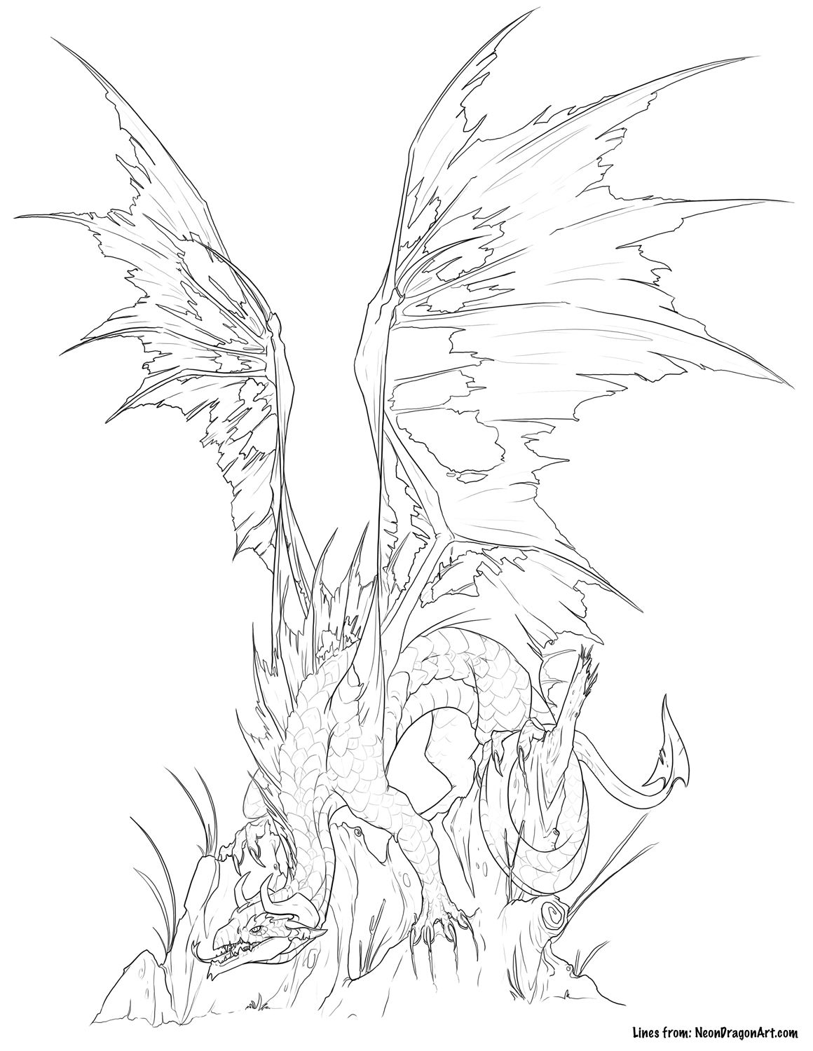 tattered dragon coloring page