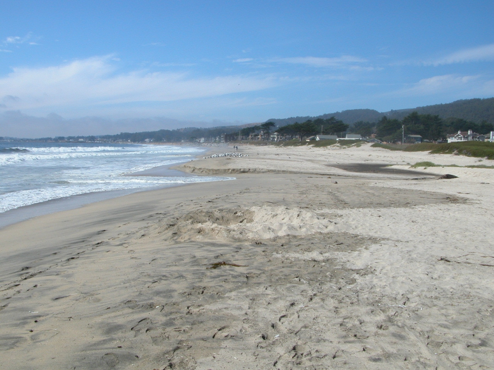 2018 Beach Bummers California S 10 Most Polluted Beaches In 2020 Beach California San Mateo County