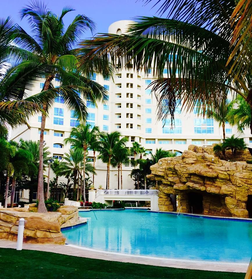 the hard rock hotel and casino hollywood florida do you like to rh pinterest co uk