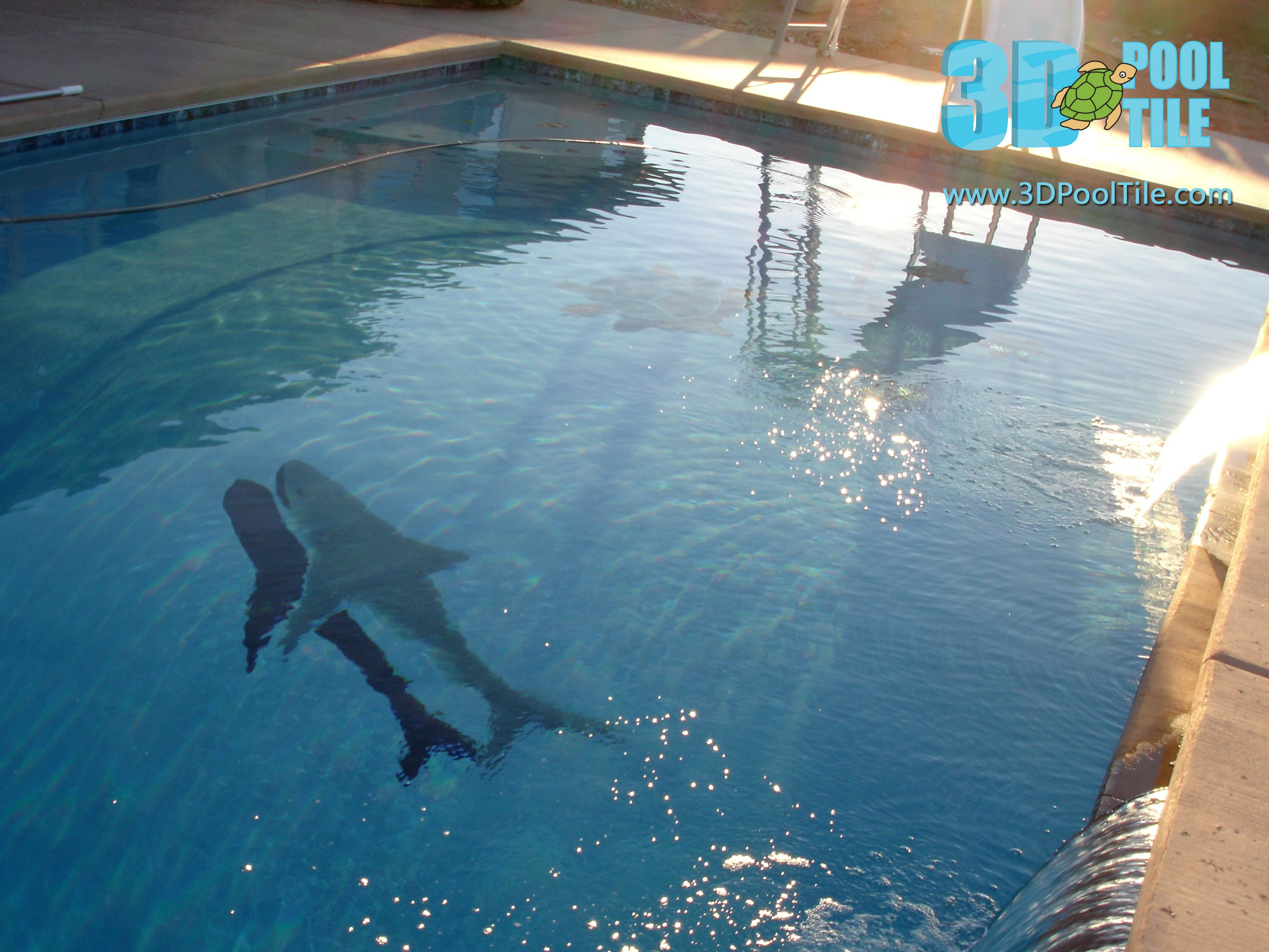 3d Pool Tile Great White Shark Mosaic Can Be Installed In