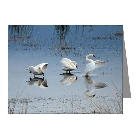 Dance of the Trumpeters Note Cards on CafePress.com