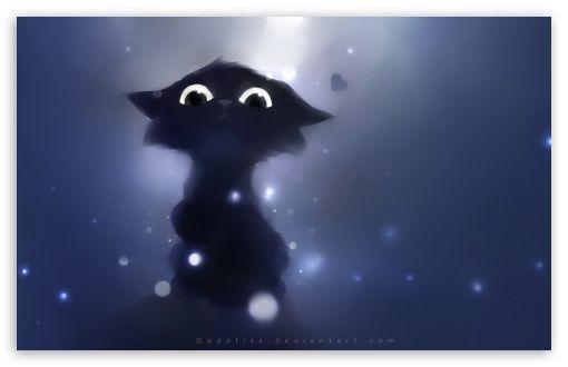 Download Judge Cat Hd Wallpaper Kedi Resim Siyah