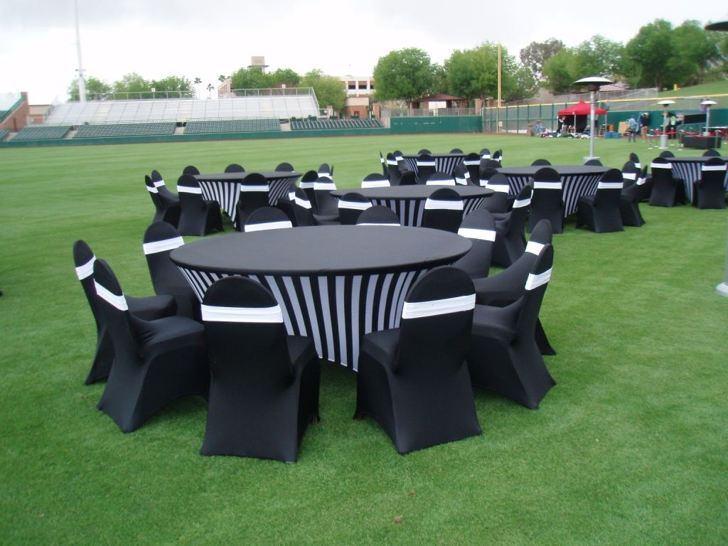 Pinterest & One of the creative event featuring zebra theme on Spandex Table ...