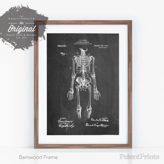Anatomical Skeleton Patent Poster, Doctor Office Decor, Medical Student Gift, Skeleton Artwork, Doct #medicalstudents