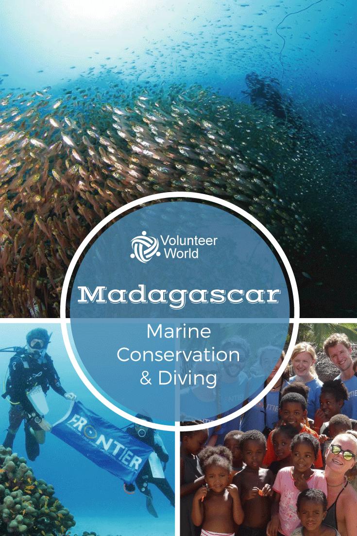 Let S Save The Ocean Volunteer In Marine Conservation In Madagascar Marine Conservation Volunteer Travel Volunteer