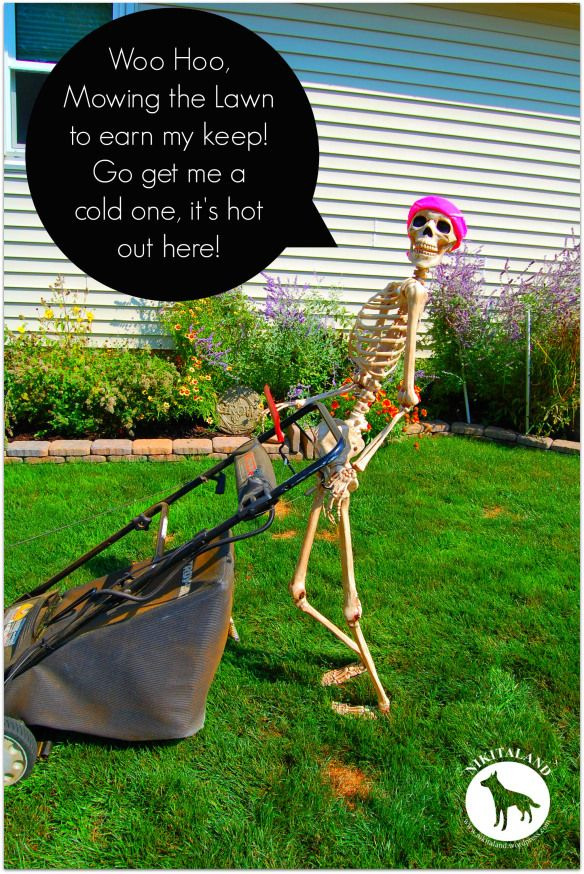 SKELETON MOWING WOO HOO (With images) What is landscape