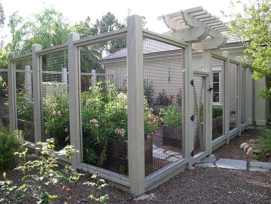 Deer Zaun Drahtzaun Fur Garten Garten Fencewith Los Altos Pflanz 94022 Eingezaunter Gemusegarten Garten Zaun Ideen Garten