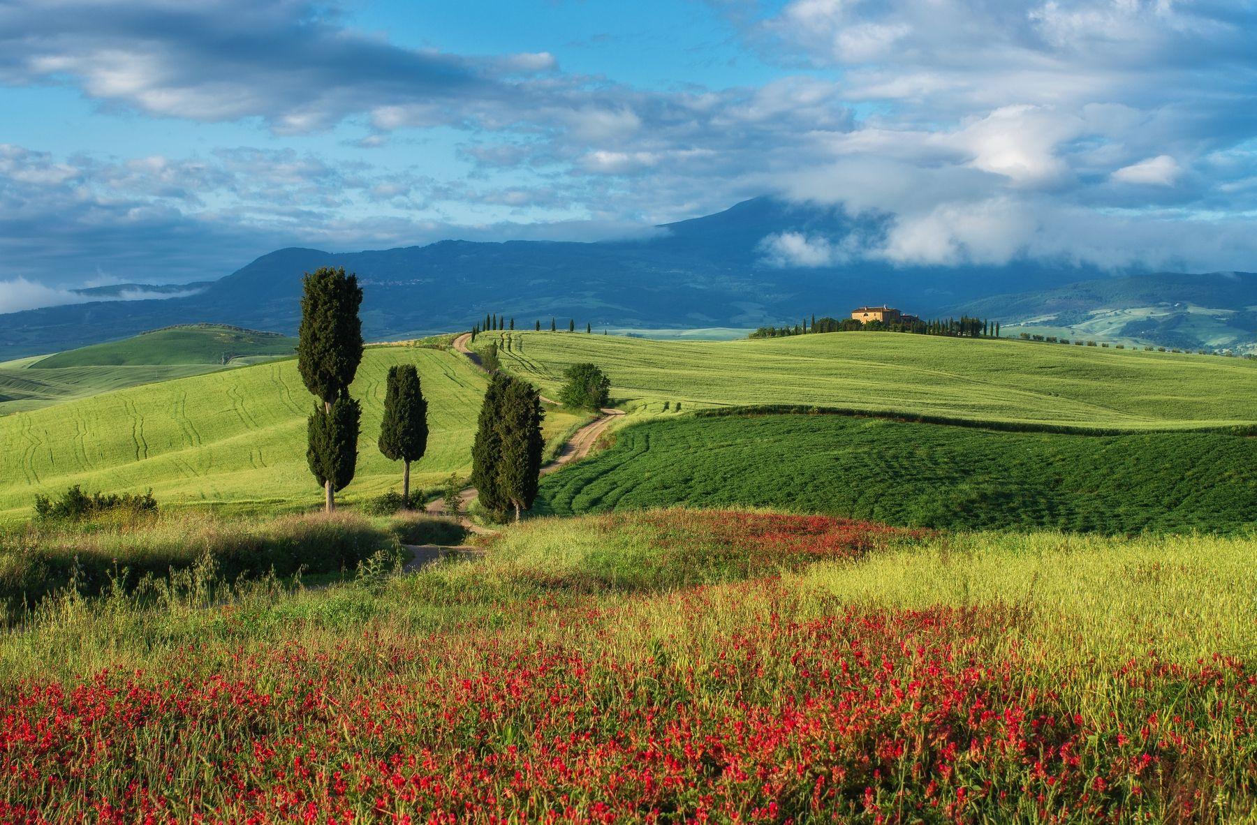 Тоскана весной фото