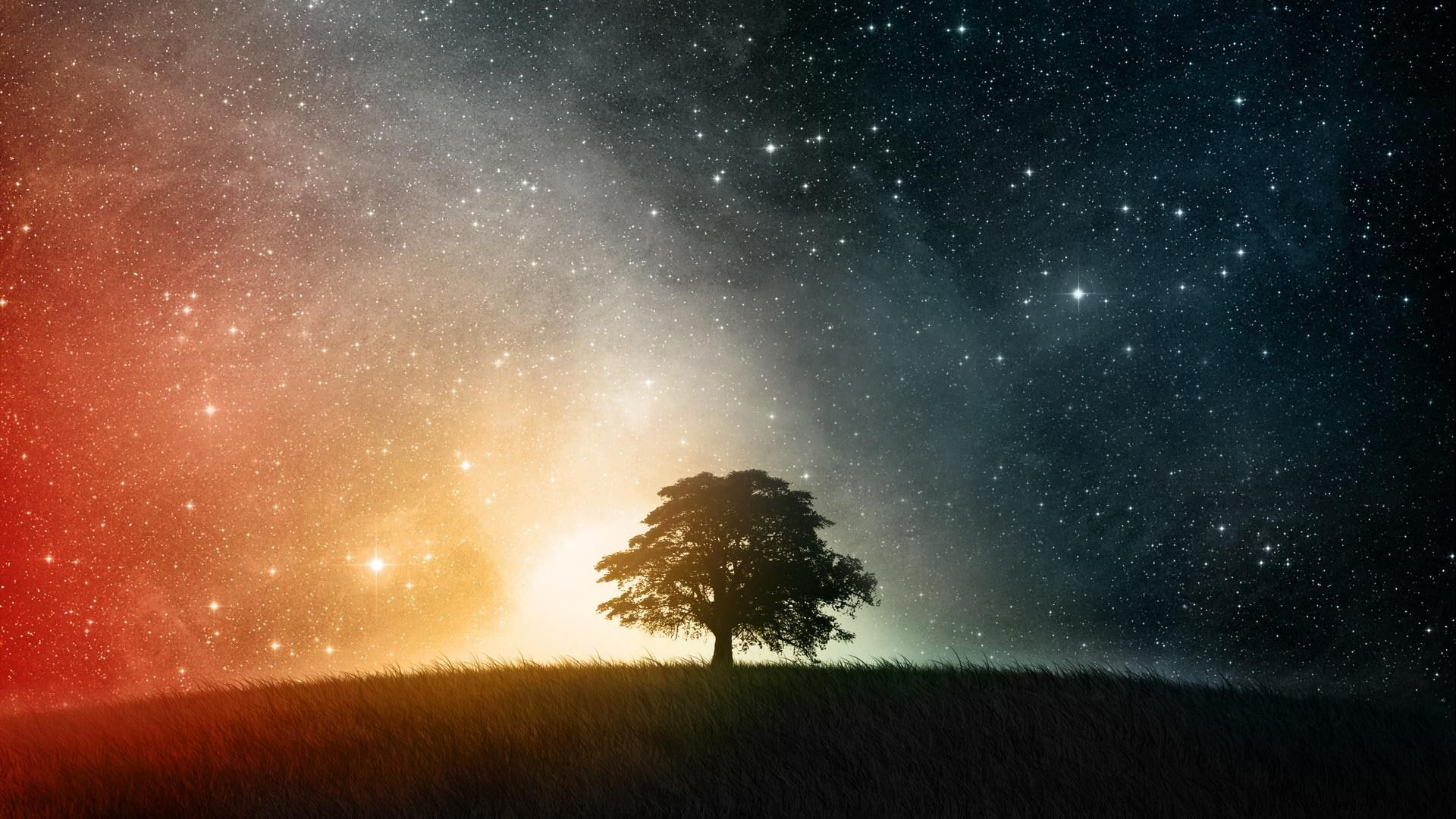 Day Vs Night Silhouette Of Grass Field With Tree Under Starry Sky Landscape Space Black Stars Land Tree Universe In 2020 Artistic Wallpaper Background Star Sky