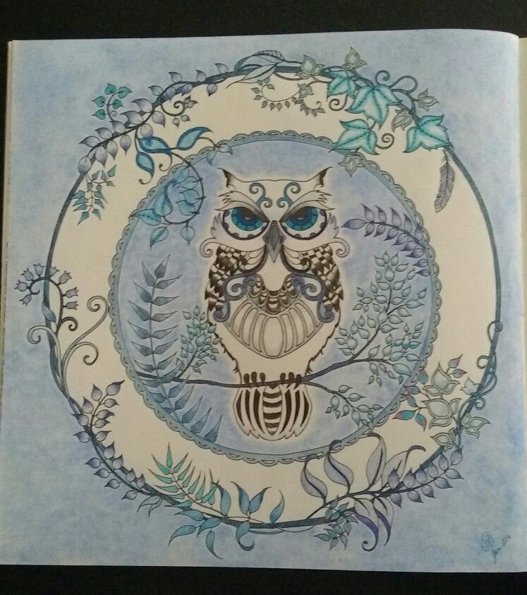 Colored By S Field Johanna Basford Enchanted Forest Owl JohannaBasford EnchantedForest With Barnes Nobles Watercolor Pencils And Staedtler