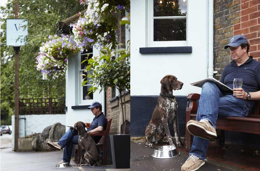 Dog Friendly Pub The Victoria East Sheen Richmond London Hotel Restaurant Pubs And Restaurants