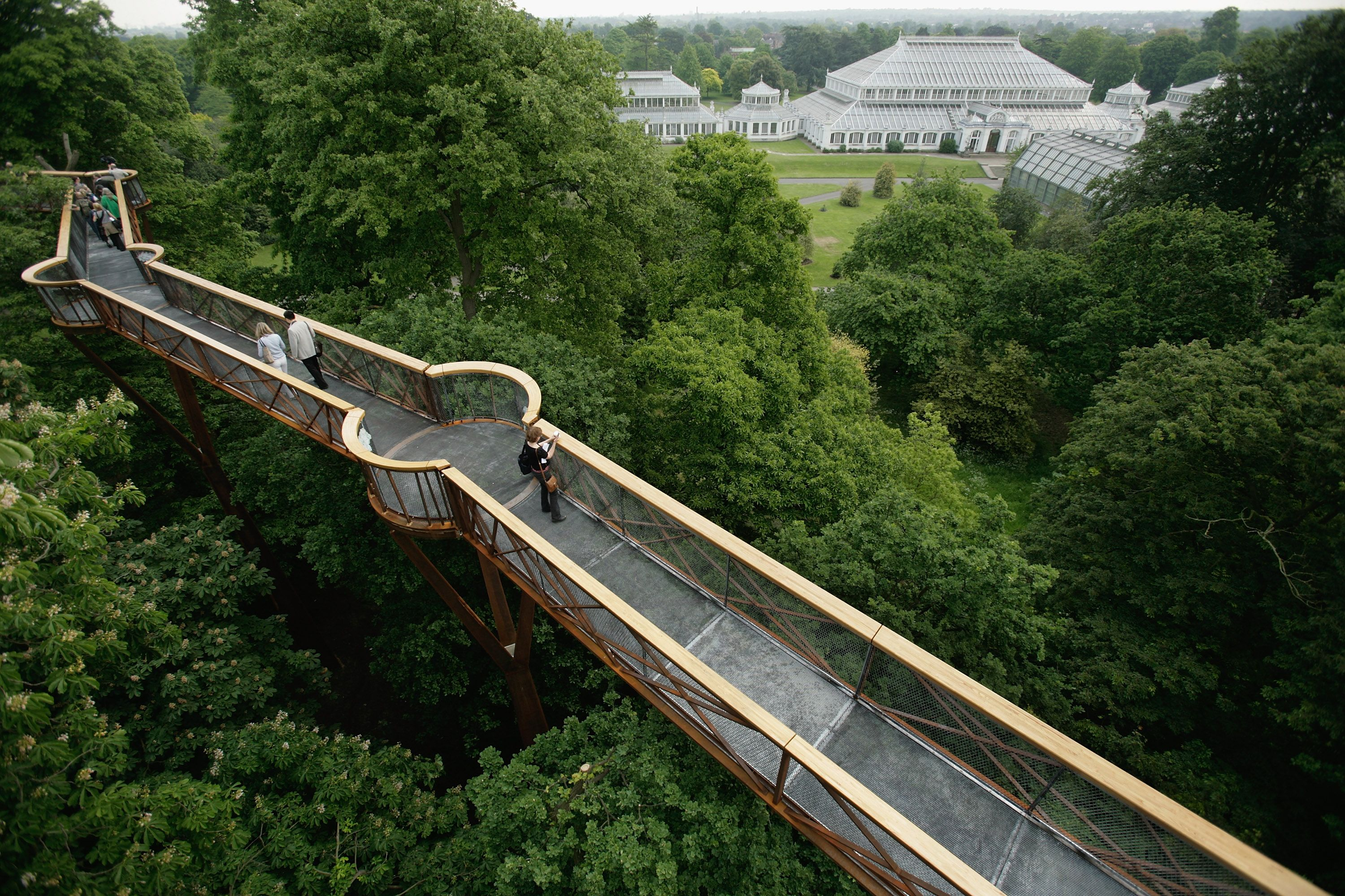Merveilleux A Treetop Walkway Overlooks The Royal Botanic Gardens, Kew, In Southwest  London. The Institution Contains The Worldu0027s Largest Collection Of Living  Plants.