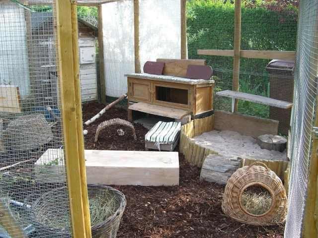 au engehege bunny 39 s paradise pinterest kaninchen. Black Bedroom Furniture Sets. Home Design Ideas
