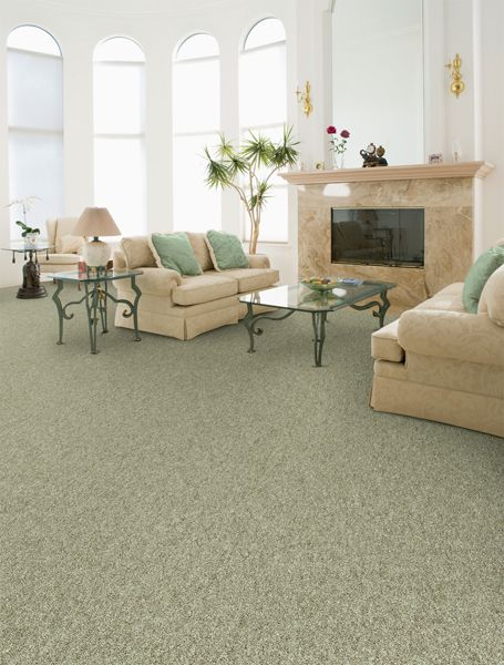 Sea Green Carpet With Cream Accents
