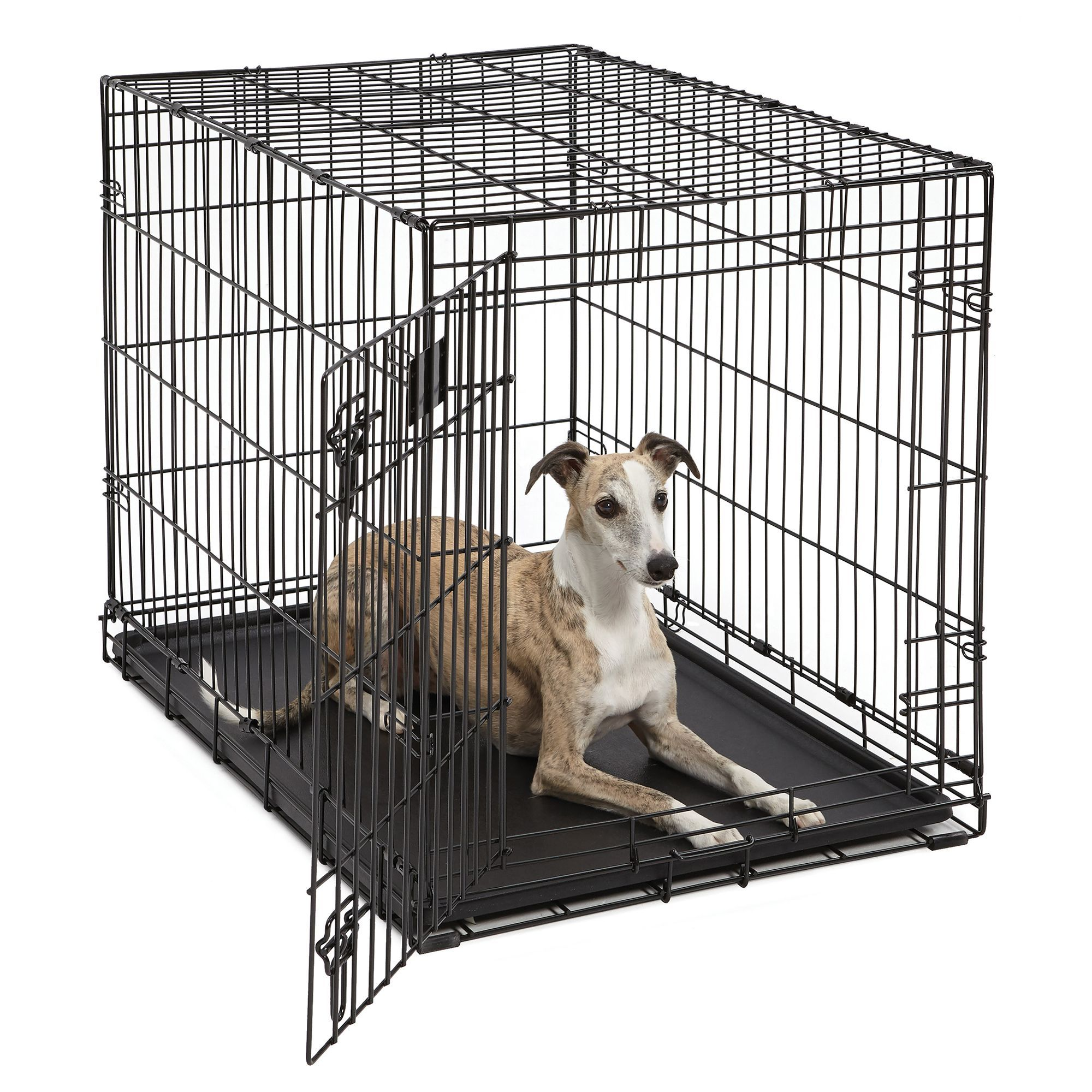 Midwest Life Stages Single Door Folding Dog Crate Size 36 L X 24 W X 27 H Black Dog Crate Folding Dog Crate Dogs
