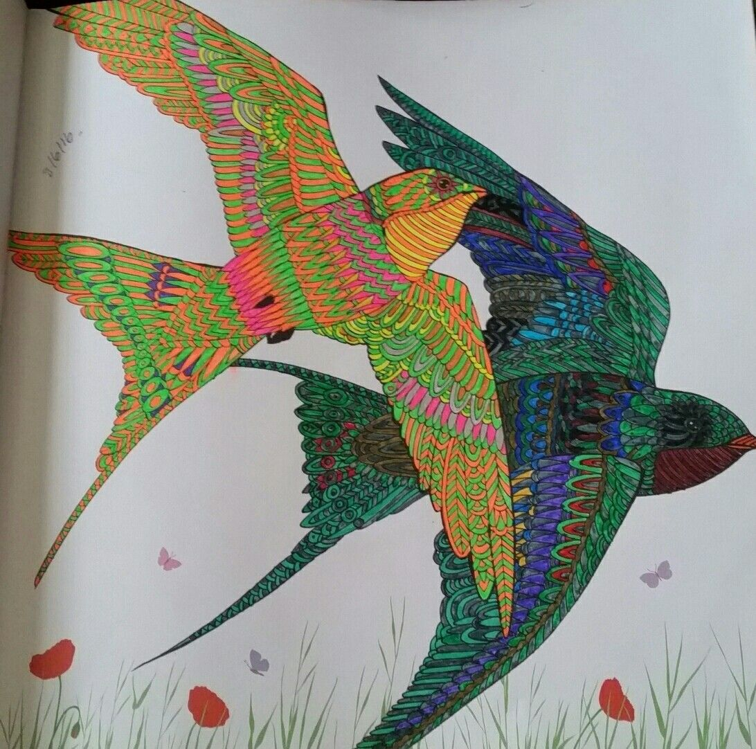 Shallows The Aviary Colouring Book Coloring Book Art Millie Marotta Coloring Book Coloring Books