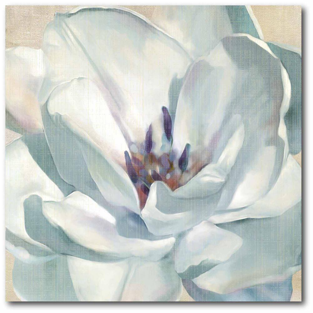 Courtside Market White Flower Ii Canvas Wall Art White Flower Canvas Wall Art Flower Canvas Stretched Canvas Wall Art