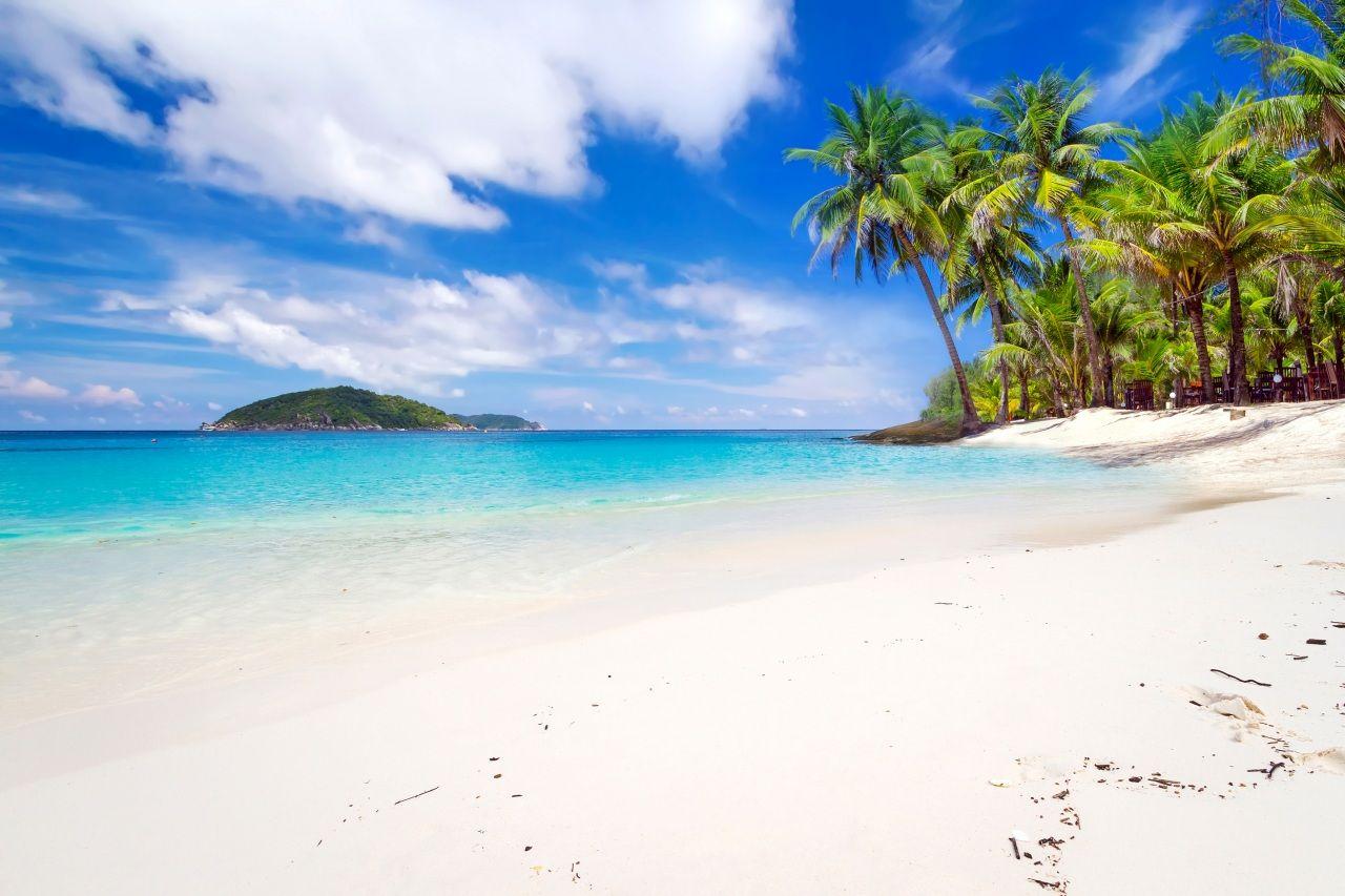 Таиланд Тропики Побережье Небо Пальмы Песок Пляж Облака Phuket Природа