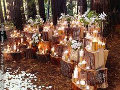 Enchanted forest wedding set-up with tree stumps, glowing candles, and flowers by Waterlily Pond.