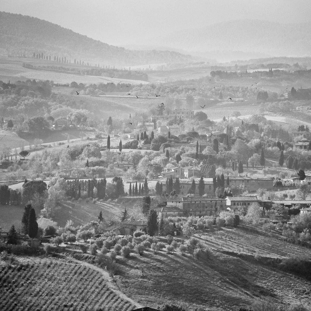#siena #sienna #italy #landscape #landscapelovers #nature #naturelovers #bnw #bnw_rose #sunset #fog #foggy #mist #bnw_globe #bnw_magazine #bnw_madrid #bnw_mood #bnw_addicted #ig_bnw #ig_today