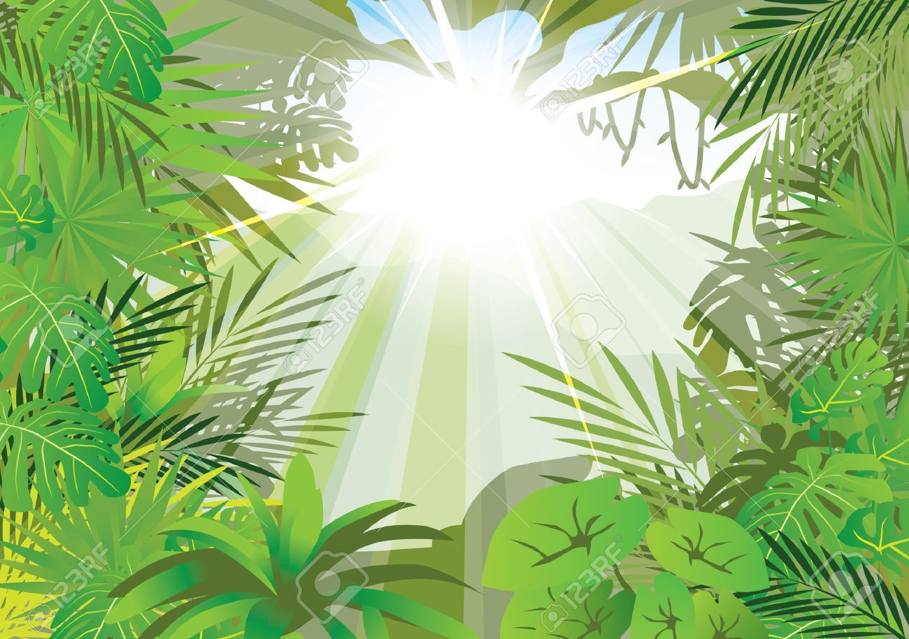 Lighting Jungle Background Vector