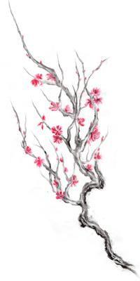 Blossom Cherry Blossom Tattoo Blossom Tree Tattoo Cherry Blossom Tree Tattoo