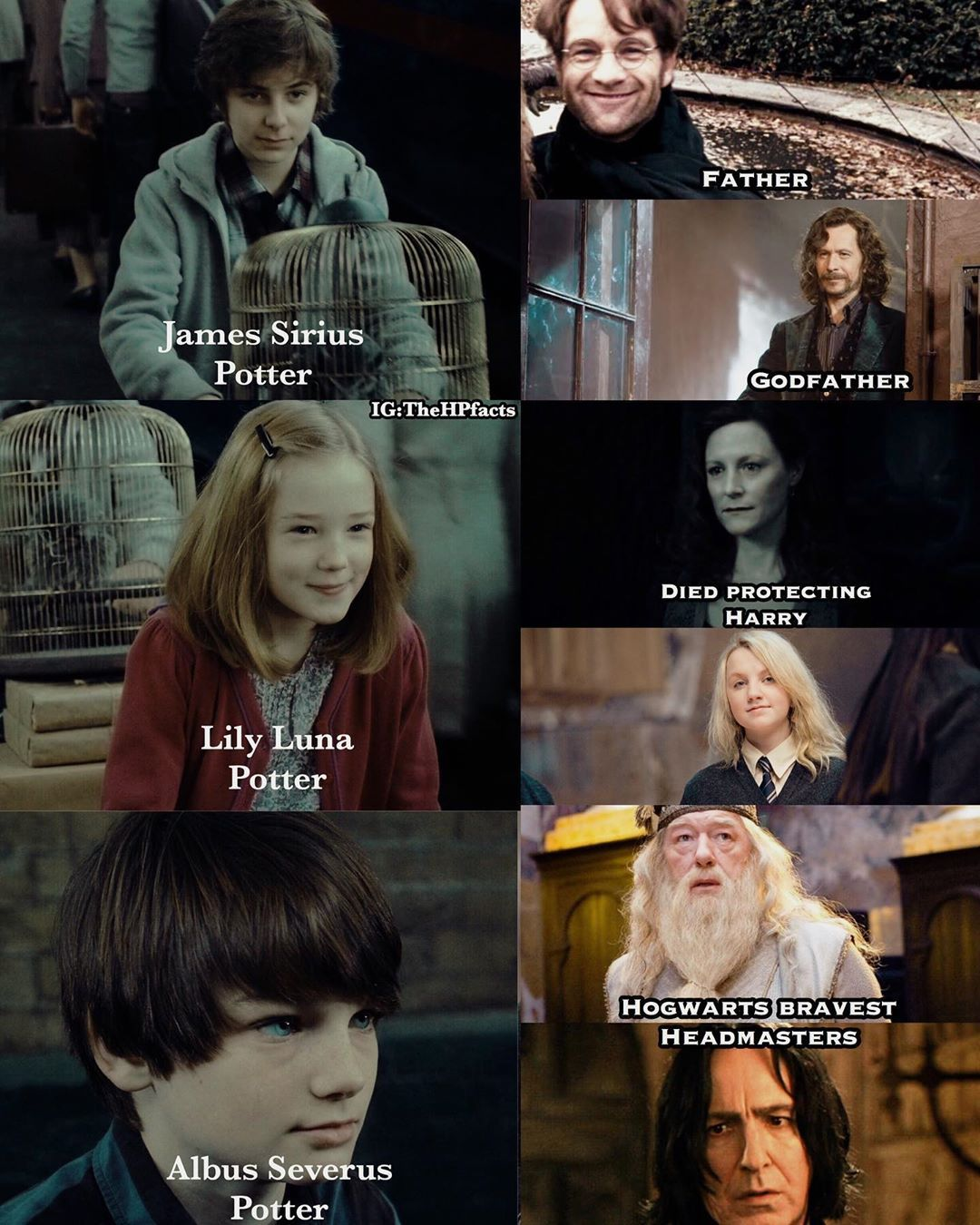 Harry Potter Facts Bts Video On Instagram Any One Tell Me Why Harry Named Her Daughter Harry Potter Feels Harry Potter Characters Names Harry Potter Facts