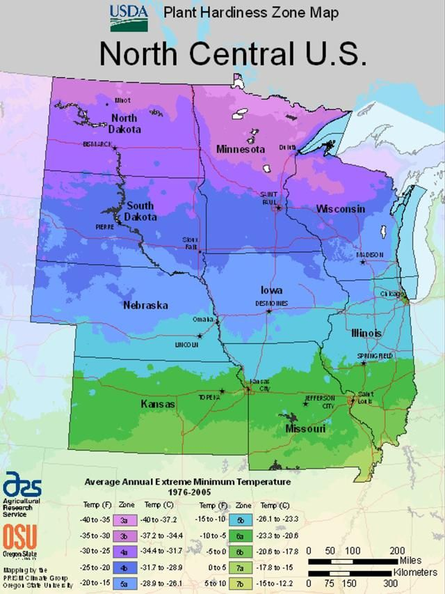 Find Your USDA Growing Zone by Region | Whimsical Landscaping ... Kansas Usda Hardiness Zones Map on usda weather map, usda garden map, usda frost map, usda regions map, usda zone chart, agricultural zone map, ahs heat zone map, plant zone map, texas state plane coordinate zones map, usda zone 8 map, fruit zone map, usda climate zones, usda crop zones, usda zone map of jacksonville florida, wind zone rating map, usda gardening zones, usda home map, usda zone map 2014, bangladesh map, growing zone map,