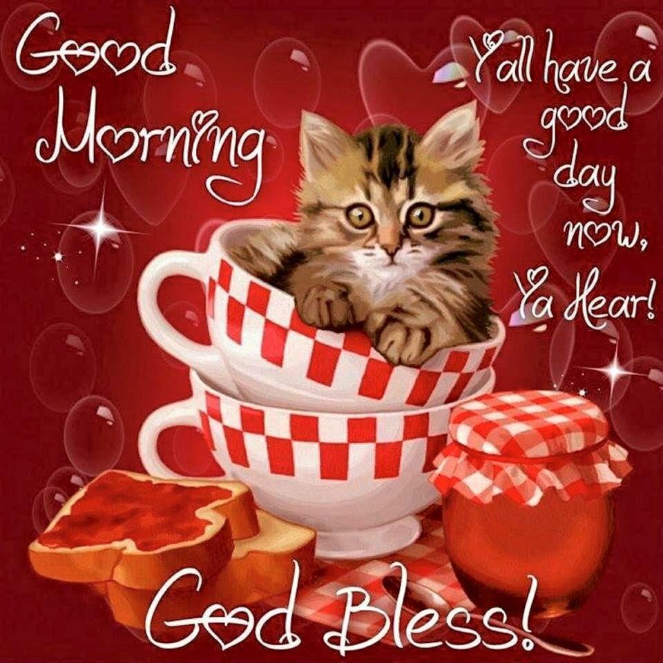 Good Morning Guten Morgen Glücklich Und Katzen