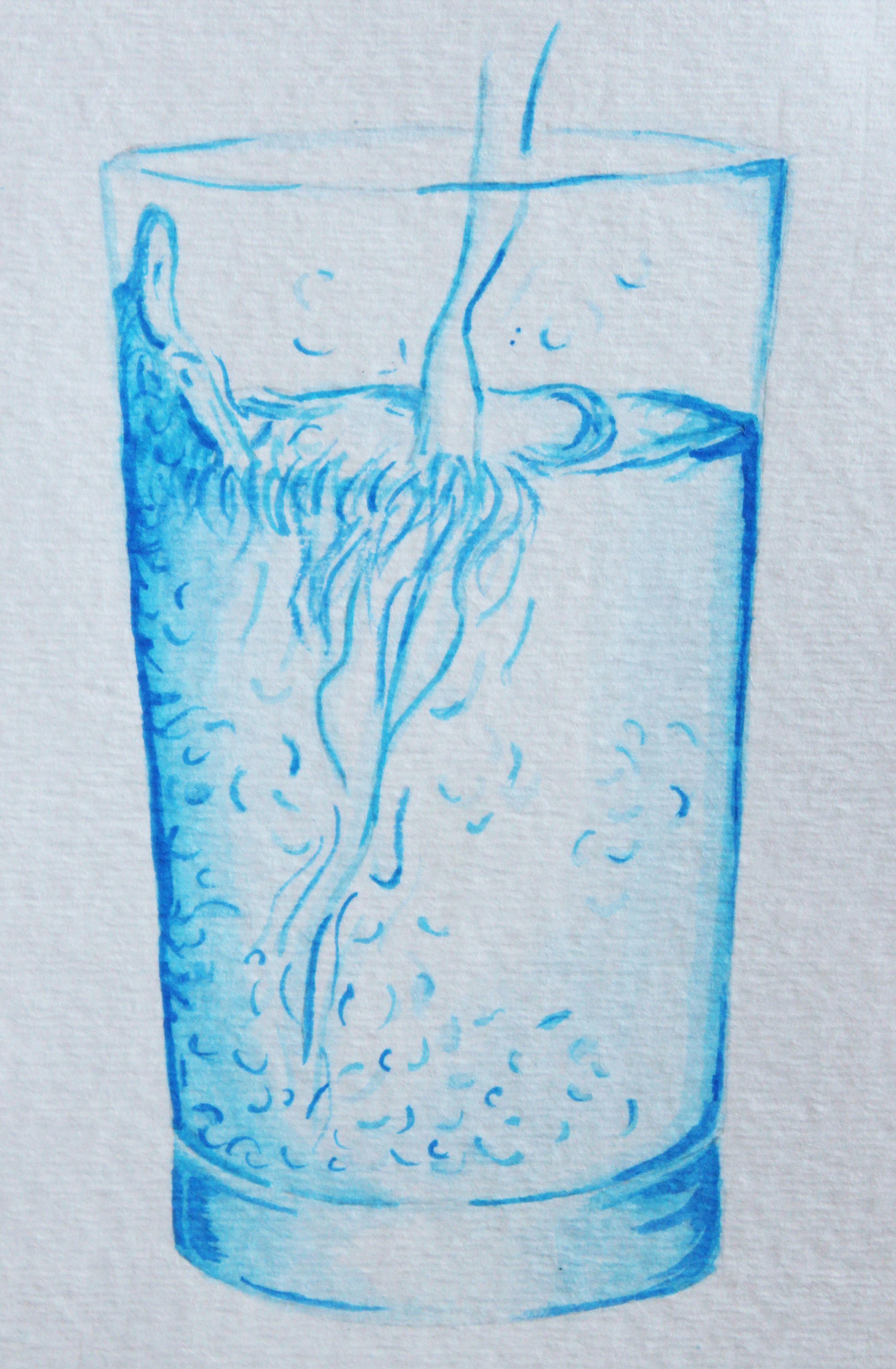 Vaso De Agua Transparencia Acuarela Con Imagenes Arte Del