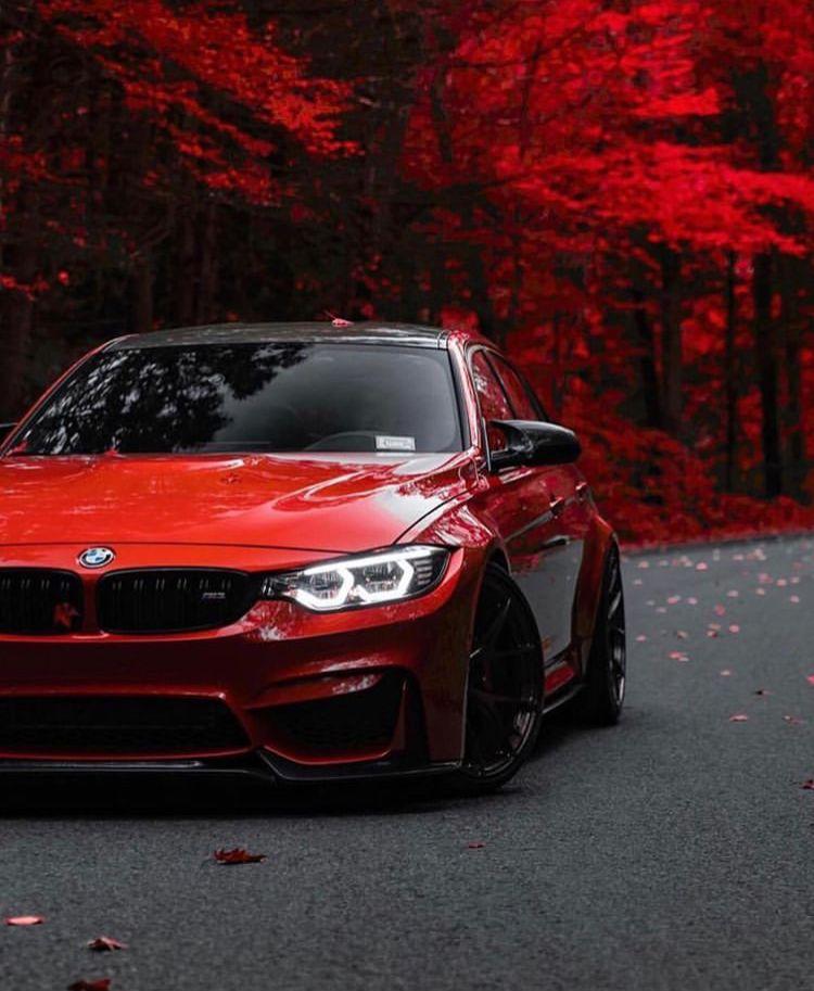 Pin By Bryan Dimattia On Bmw M Luxury Cars Bmw Bmw Bmw M3