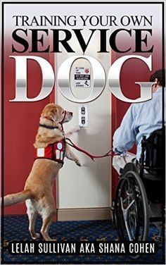 Pin On Dogs Working Therapy Service