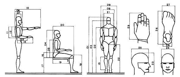 Antropometria necessidade de constantes investiga es for Antropometria y ergonomia