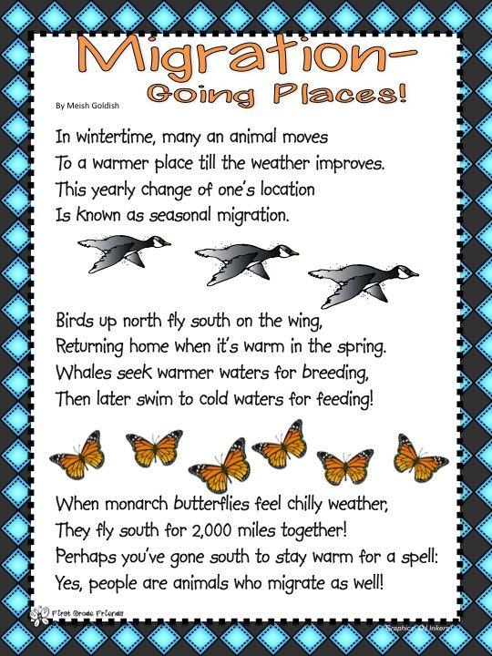 bird migration worksheets Google Search Migration