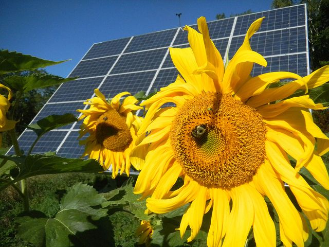 Green Up Your Warehouse Do The Right Thing And Save Money Too Green Energy Solar Renewable Solar Solar