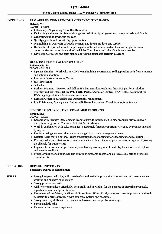 Sales Executive Resume Examples Unique Sales Senior