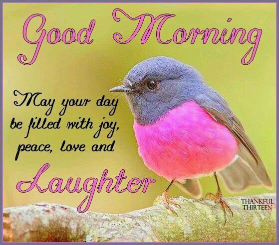 Good Morning May Your Day Be Filled With Joy Peace Love And Laughter Good Morning Happy Good Morning Good Morning Cards