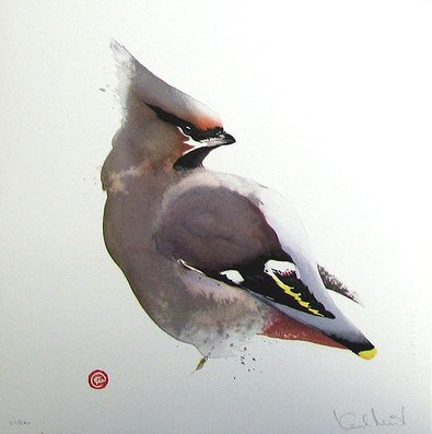 Waxwing by Karl Martens, American born painter (b.1956 ...