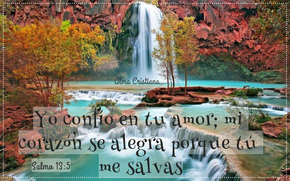 Quizá no podamos controlar las circunstancias, pero sí nuestra actitud frente a ellas.  ❥ Alma Cristiana www.facebook.com/almacristianacg