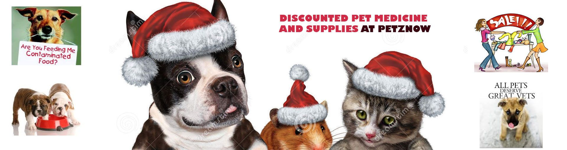 Choose from a wide range of pet clothing at an attractive price at PetzNow. Be it for you cute little dog or cat, we have pet clothing for every pet to dress them up the way you want. Browse through our featured collection of pet clothing at http://petznow.com/ and give your pet a nice makeover!