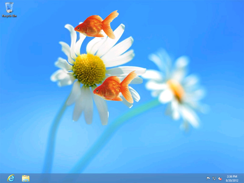 Elegant Google Nexus One Live Wallpaper For Windows 7 · Fish WallpaperFree ...