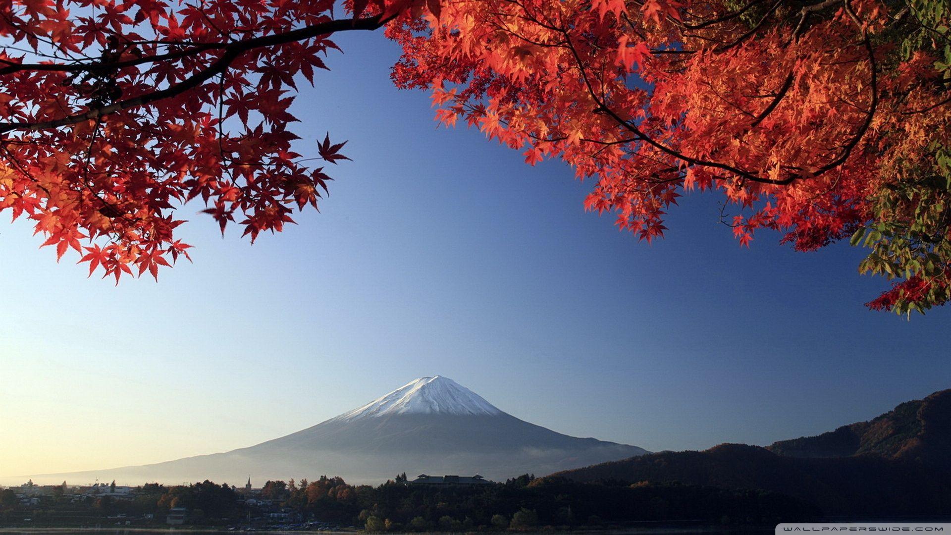Autumn Mount Fuji Japan Hd Desktop Wallpaper High Definition Mount Fuji Mount Fuji Japan Scenery