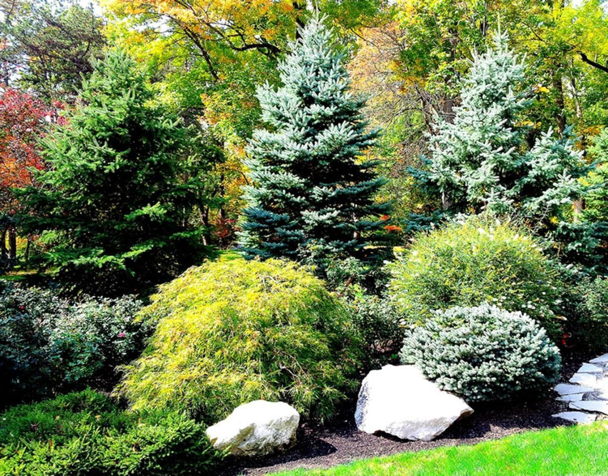 Beautiful Large Yard Landscaping Design Ideas (22 #privacylandscaping