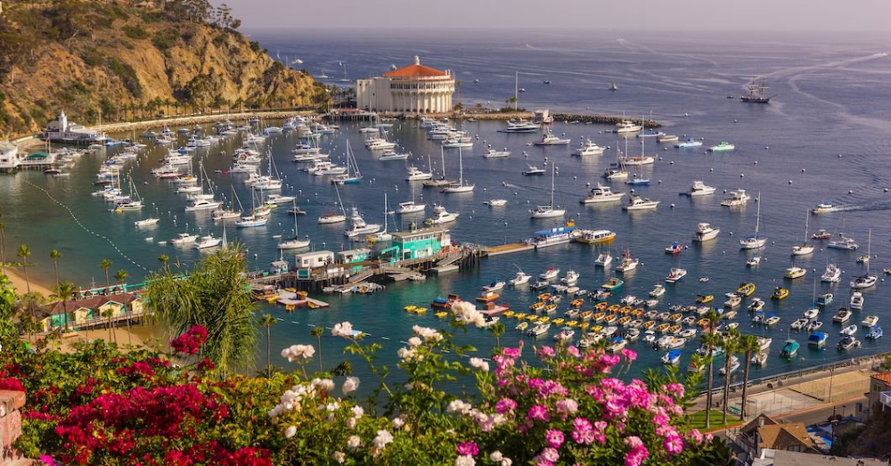 For Residents Of Los Angeles Santa Catalina Island Is A Tranquil Respite From The City S Harried Frenzy Of Santa Catalina Island Us Islands Dreamy Landscapes