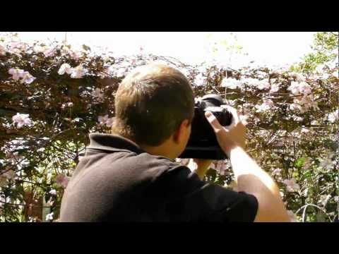Shoot in Manual Mode Pt  1 - Aperture, Shutter Speed and ISO