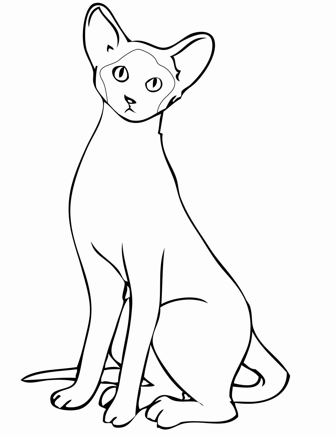 Cartoon Cat Coloring Pages Elegant Coloring Extraordinaryse Cat Coloring Pages Ideas Cat Coloring Page Cat Coloring Book Cartoon Coloring Pages