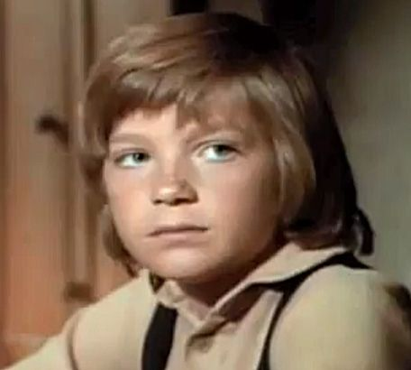 James cooper ingalls was the second adopted son of Jason bateman little house on the prairie