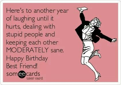 Elegant Free And Funny Birthday Ecard: Hereu0027s To Another Year Of Laughing Until It  Hurts, Dealing With Stupid People And Keeping Each Other MODERATELY Sane.