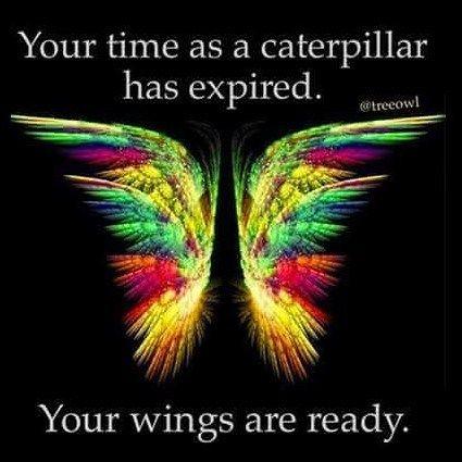#thoughtfortheday #inspirationalquotes #inspiration #spiritual #abundance #gratitude #love #awakeningcode #purpose #unity #wisdom #passion #Manifest #metaphysical #magic #enlighten #healing #lovequotes #lovers #soulmate #iloveyou #passion #sphynxlair #sphynxglamour #hugosnakedfriends #sphynx #sphynxofinstagram #ifitisntasphynxitsjustacat #sphynxcat #sphynxtagram #sphynxlovers by kismet_kiki | @blckrc
