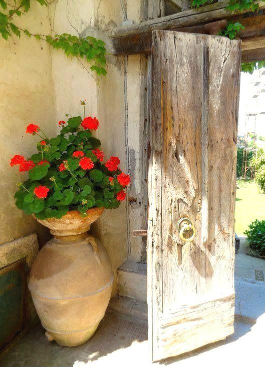 4d861971d Esta época es ideal para abonar las plantas que tienen flor (ejemplo:  malvón). Para mi jardín elijo abonos orgánicos (turba, humus, compost,  estiércol, etc.